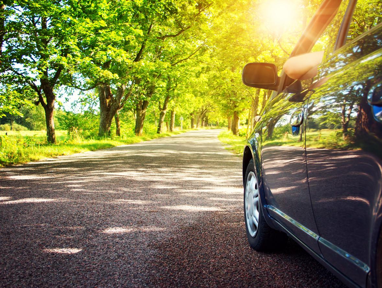 Svart bil på asfaltsväg med gönskande lövträd